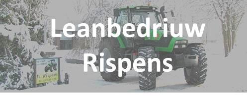 Leanbedriuw Rispens